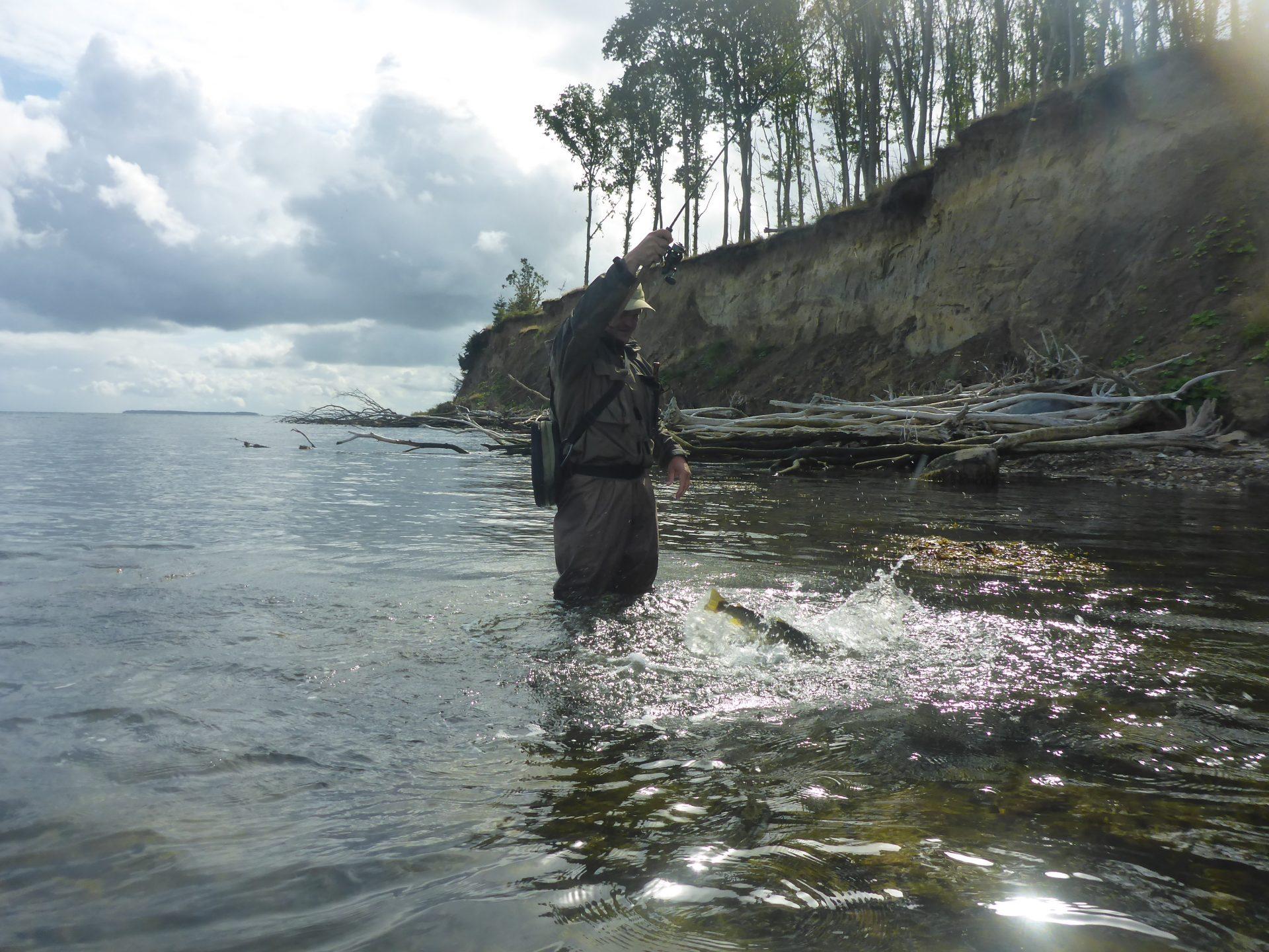 Lystfiskeri om vinteren